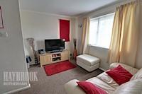 Open Plan Lounge / Bedroom / Kitchen